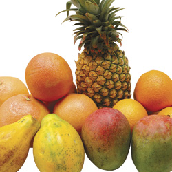 Fruits Set Tropical