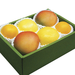 Trio of Fruits in a Gift Box