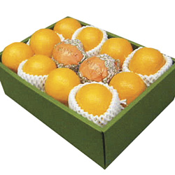 Oranges in a Gift Box