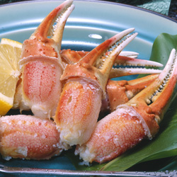 Boiled Snow Crab Claw